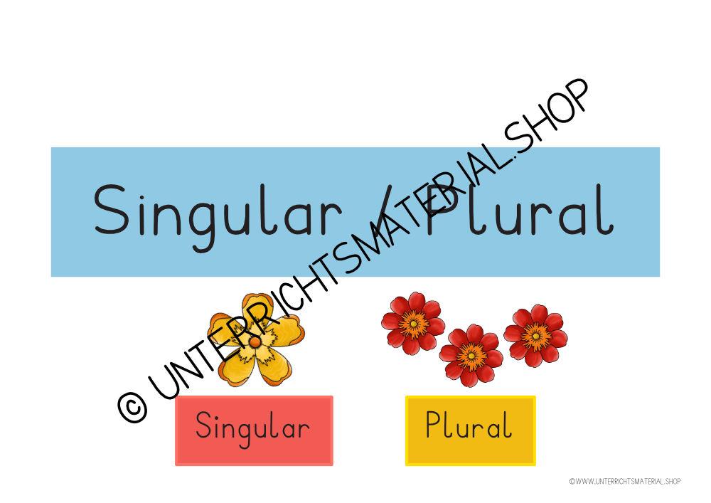 Wort des Tages Singular / Plural