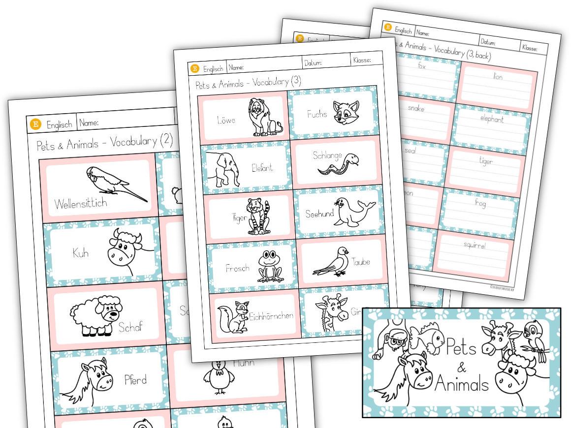 Vokabel-Lern-Karten Pets & Animals