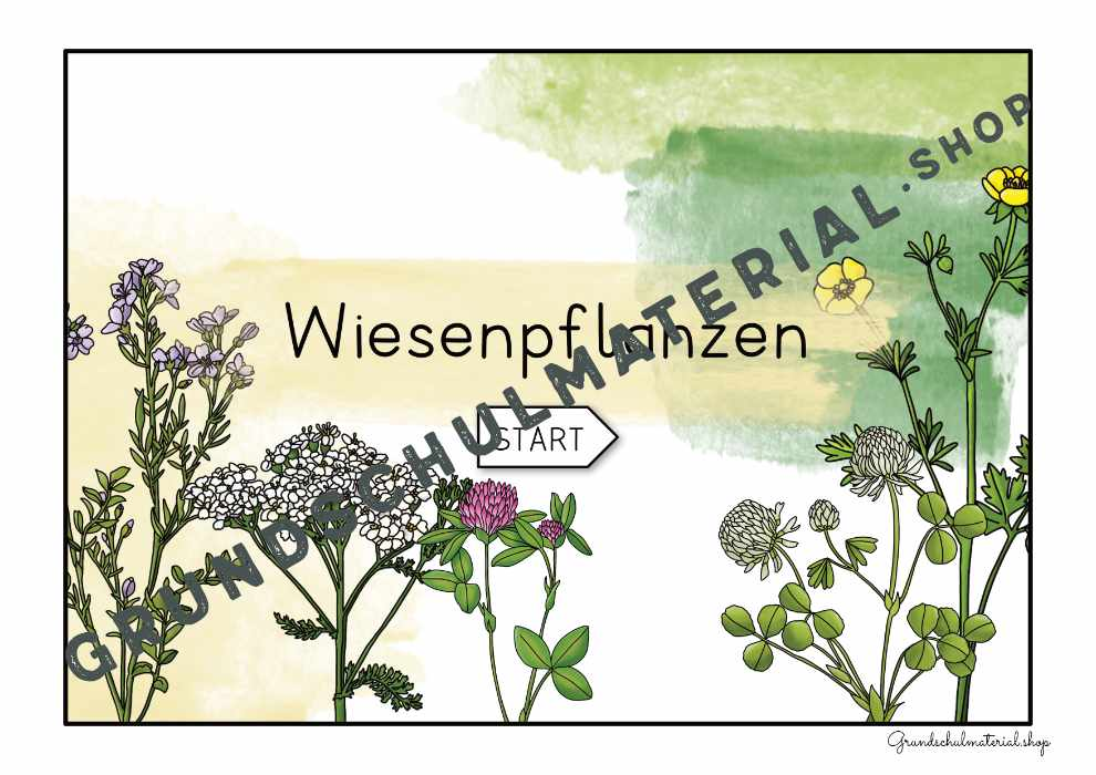 "Materialpaket ""Lebensraum Wiese"""